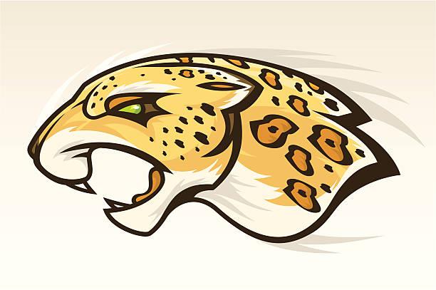 jaguar head - jaguar stock illustrations