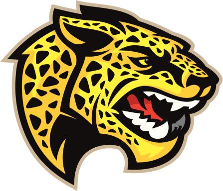 Jaguar Mascot Head