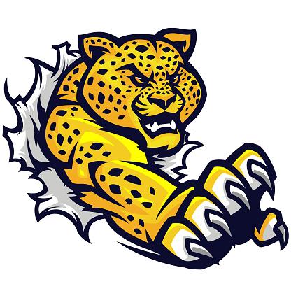 Jaguar Tear sport kit