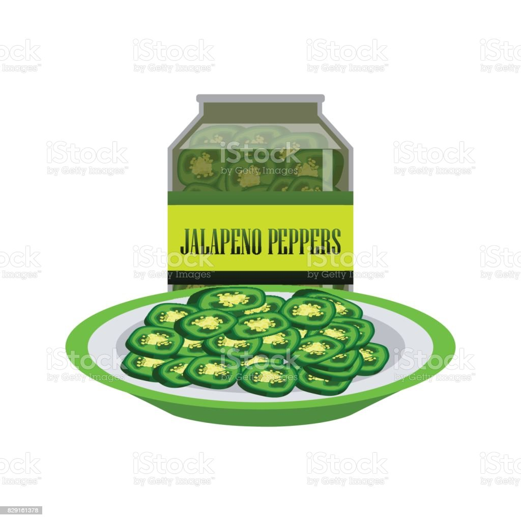 Jalapenos pickle in a glass as canned food. vector illustration vector art illustration