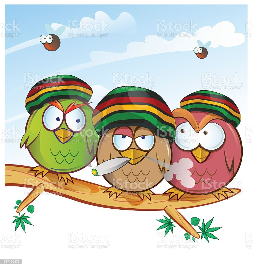 jamaican owl group cartoon vector art illustration