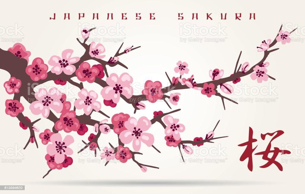 Branche De Fleur De Cerisier Japon Cliparts Vectoriels Et Plus D