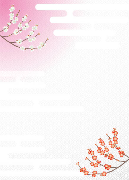 Japanese background material of red plum and white plum background plum blossom stock illustrations