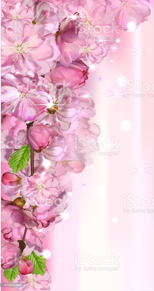 japanese cherry royalty-free japanese cherry stock vector art & more images of abstract