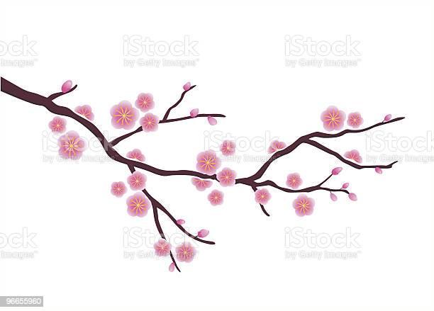 Japanese plum blossom vector id96655960?b=1&k=6&m=96655960&s=612x612&h=m03gml48zhec0wf5nq0fqjm7pdjllmsn z2upfa9bma=