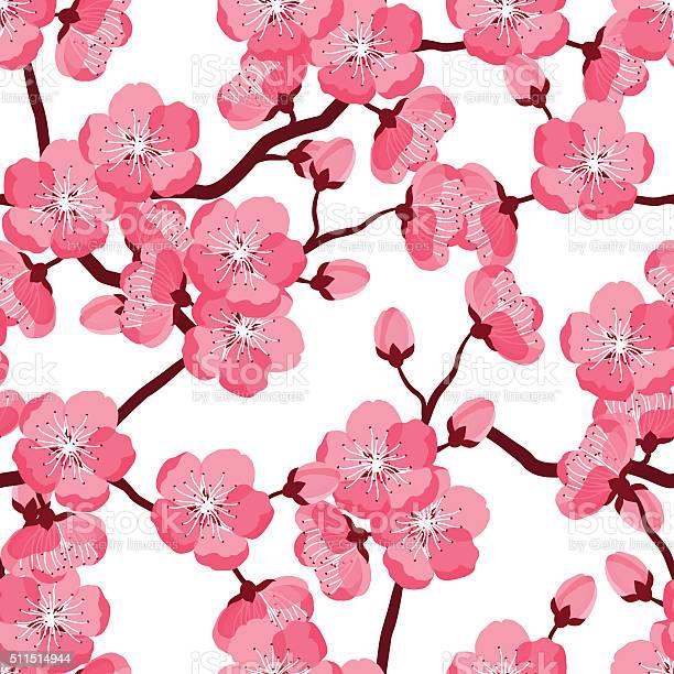 Japanese sakura seamless pattern with stylized flowers background vector id511514944?b=1&k=6&m=511514944&s=612x612&h=4obmpwn 7xcyb2mtghjcl7llz26 fynnubuhopayph8=