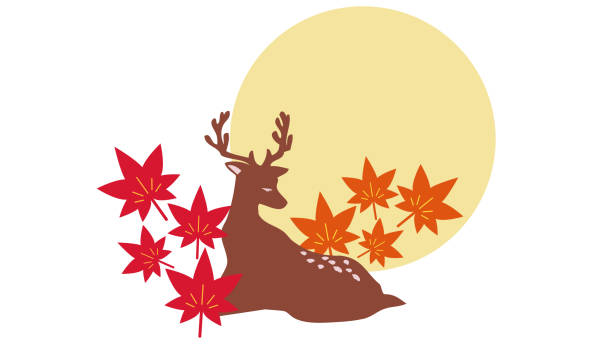 Japanese style illustration of deer and maple vector art illustration