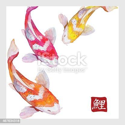 Japanese watercolor carps koi swimming. Vector format. Calligraphic simbol of carp.