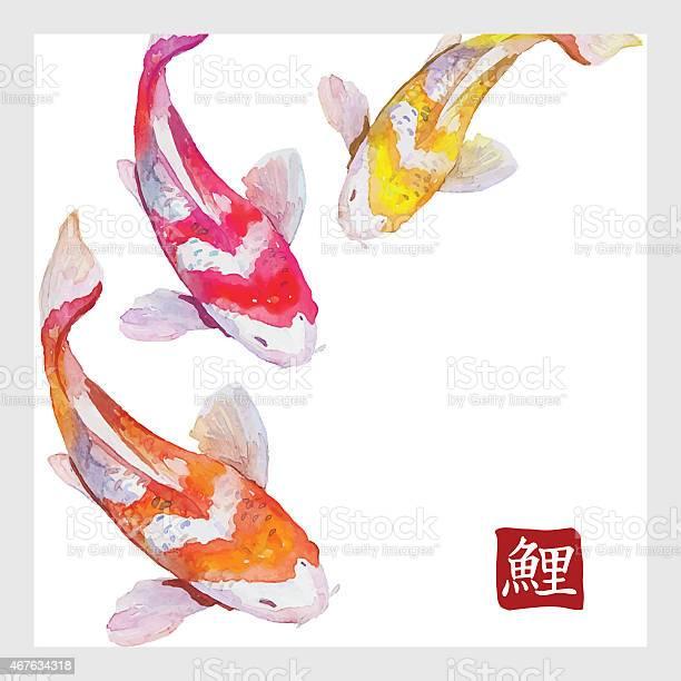 Japanese watercolor carps koi swimming calligraphic simbol vector id467634318?b=1&k=6&m=467634318&s=612x612&h=v9yabcnmkgwkda zyfumfvjthpkhldqzqoc9netfg8i=
