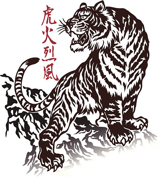 illustrations, cliparts, dessins animés et icônes de japanesque tigre - tigre blanc
