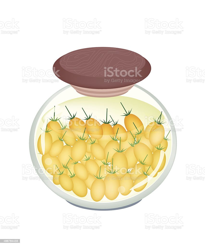 Jar of Delicious Pickled Plum Tomatoes vector art illustration