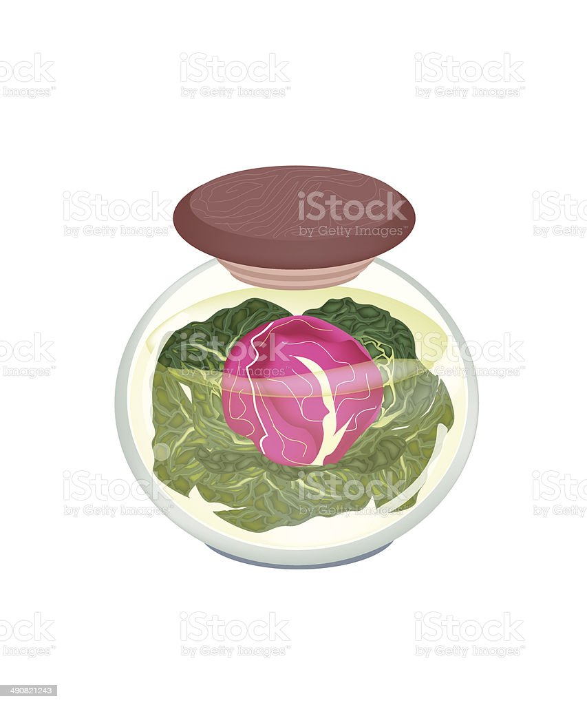 Jar Of Delicious Pickled Purple Cabbage Stock Illustration Download Image Now Istock