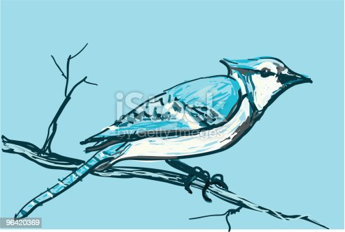 If you like this bird, why don't you check out the rest of the collection!