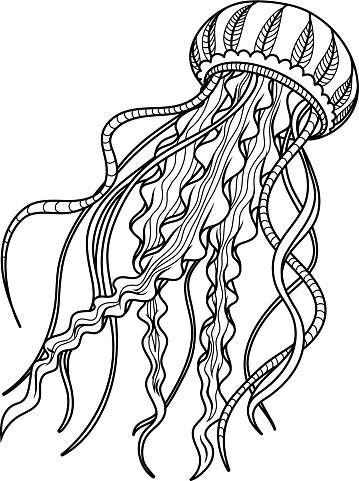 Jellyfish Antistress Hand Drawn Sketch For Adult ...
