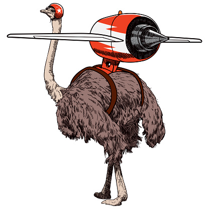 Jet pack ostrich