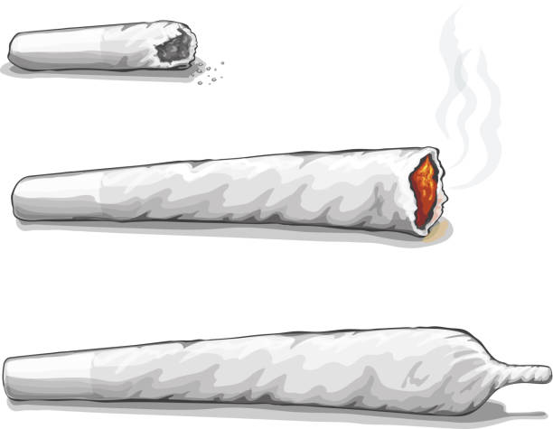 Joint or spliff. Drug consumption, marijuana and smoking drugs  joint or spliff. Drug consumption,  marijuana and smoking drugs. Vector marijuana joint stock illustrations