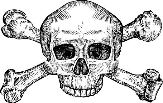 Jolly roger. Hand drawn human skull and crossbones. Sketch vector