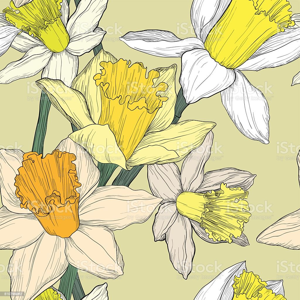 jonquil daffodil narcissus seamless pattern vector art illustration