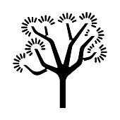 Joshua tree glyph icon. Yucca brevifolia. Desert plant. Palm tree yucca.  Silhouette symbol. Negative space. Vector isolated illustration