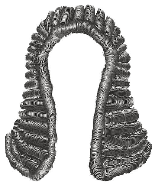 judge  wig gray hair curls. medieval style antique.realistic 3d . - 가발 stock illustrations