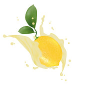 Juice milk yogurt lemon splashing. Juicy lemon with green leaves, water splash packaging template. Vector EPS 10.