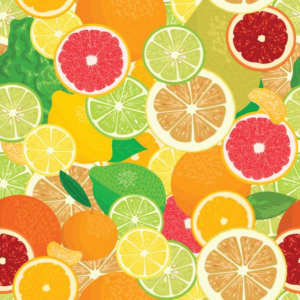 Juicy Citrus fruits set. Bright and vivid. Yellow, orange, red, green. Whole and slices vector art illustration