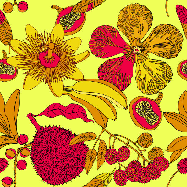 juicy exotic fruits and plants. - jungle stock illustrations