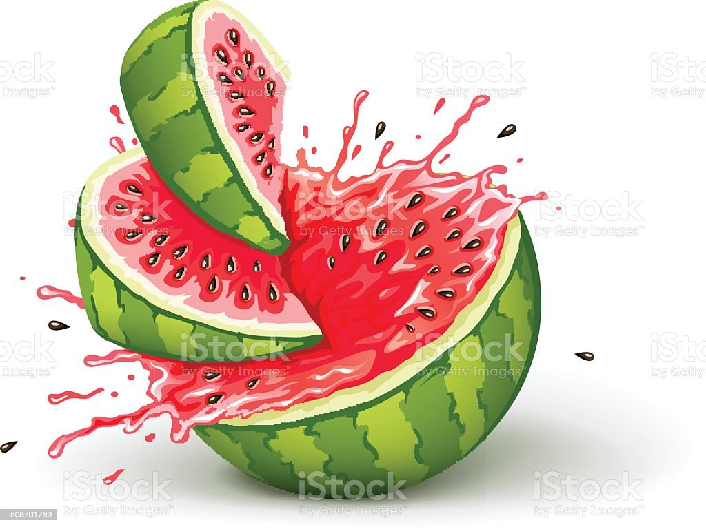 Juicy ripe watermelon cuts with splashes of juice drops vector art illustration