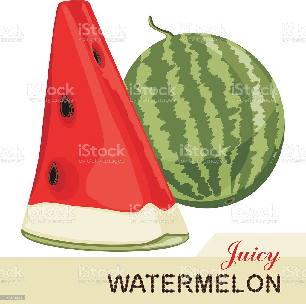 Juicy watermelon isolated on the white background royalty-free stock vector art