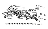 Hand-drawn vector drawing of a Jumping Cartoon Big Cat. Black-and-White sketch on a transparent background (.eps-file). Included files are EPS (v10) and Hi-Res JPG.