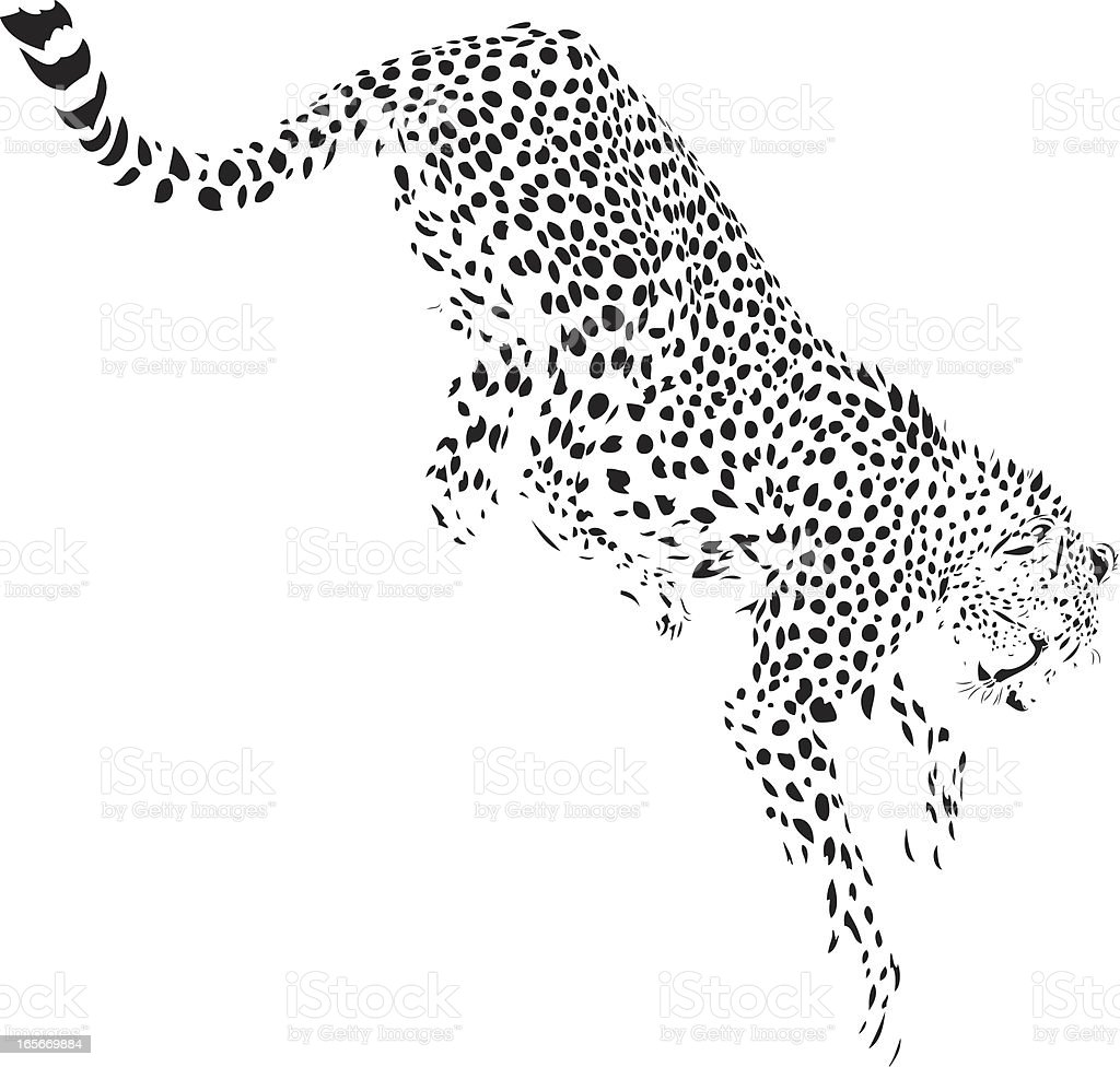 Jumping cheetah illustration royalty-free stock vector art