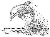 Hand-drawn vector drawing of a Jumping Dolphin at the Sea and a Water Splash. Black-and-White sketch on a transparent background (.eps-file). Included files are EPS (v10) and Hi-Res JPG.
