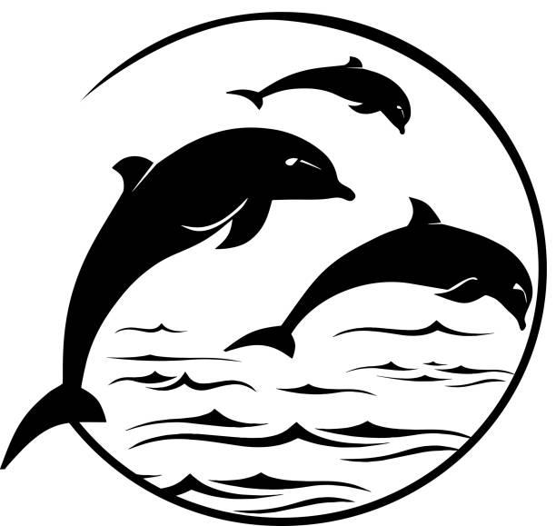 Jumping Dolphins Logo vector art illustration