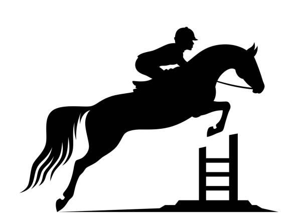 Jumping horse vector art illustration
