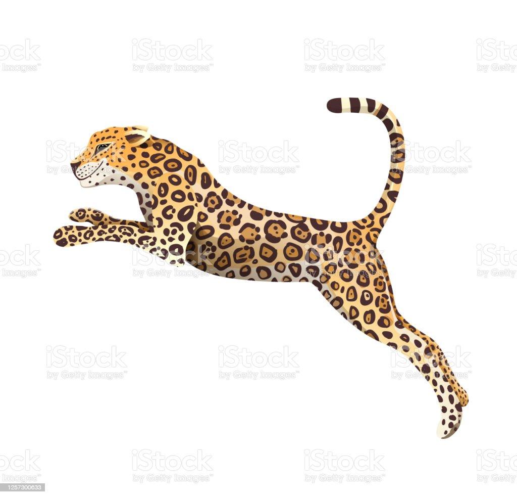 Jumping Jaguar Clipart Big Cheetah Cat Cartoon Stock Illustration Download Image Now Istock