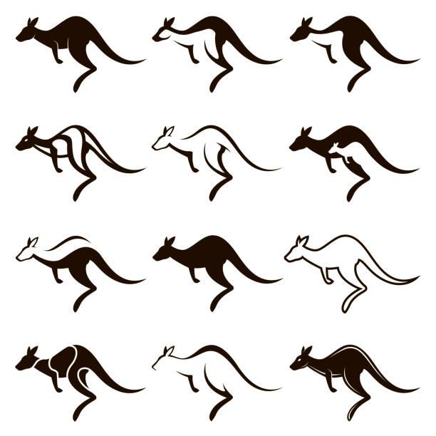jumping kangaroo icon set collection of black jumping kangaroo icon isolated on white background kangaroo stock illustrations