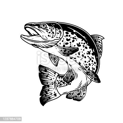 Jumping trout fish vintage template in monochrome style isolated vector illustration