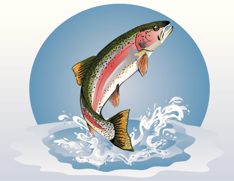 Jumping Trout (Rainbow)