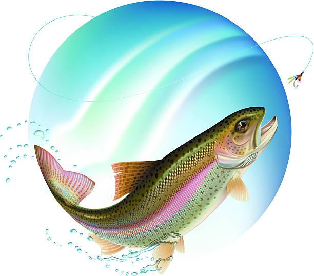 illustrazioni stock, clip art, cartoni animati e icone di tendenza di saltare trota - trout