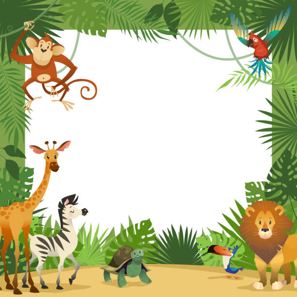 Jungle animals card. Frame animal tropical leaves greeting baby banner zoo border template party children Jungle animals card. Frame animal tropical leaves greeting baby banner zoo border template party children, cartoon vector illustration zoo stock illustrations