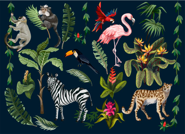 Jungle animals, flowers and trees isolated. Vector. Jungle animals, flowers and trees isolated. exotic animals stock illustrations