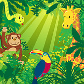 Jungle Animals