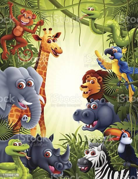 Jungle animals vector id175346126?b=1&k=6&m=175346126&s=612x612&h=iwdm9biuervymm4wqulrtevrv bwswpfjmmmgaqmcb0=