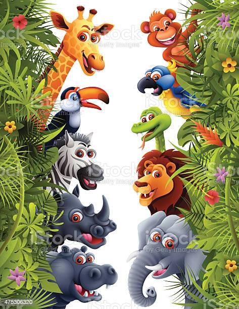 Jungle animals vector id475306320?b=1&k=6&m=475306320&s=612x612&h=ib2iccn4517n3ojjt0z9glu k60hdehlnvdvjshbf9y=