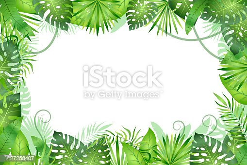 Jungle background. Tropical leaves frame. Rainforest foliage plants, green grass trees. Paradise african wildlife jungle vector frame