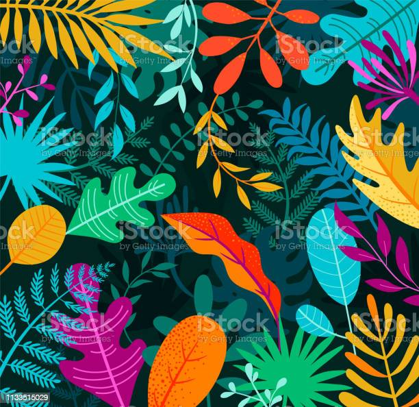 Jungle background with tropical palm leaves vector id1133515029?b=1&k=6&m=1133515029&s=612x612&h=mk5fwvwjn2jfhtwmudqvrxaopofkxodjdudbwgcw3c4=