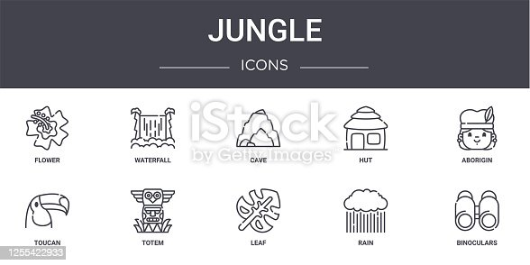 jungle concept line icons set. contains icons usable for web, logo, ui/ux such as waterfall, hut, toucan, leaf, rain, binoculars, aborigin, cave