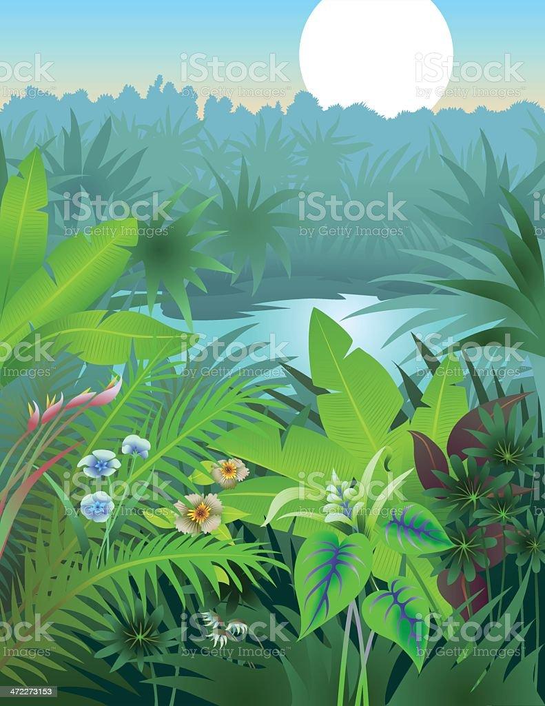 Jungle Dream vector art illustration