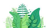 istock Jungle Foliage Plants 1286904160