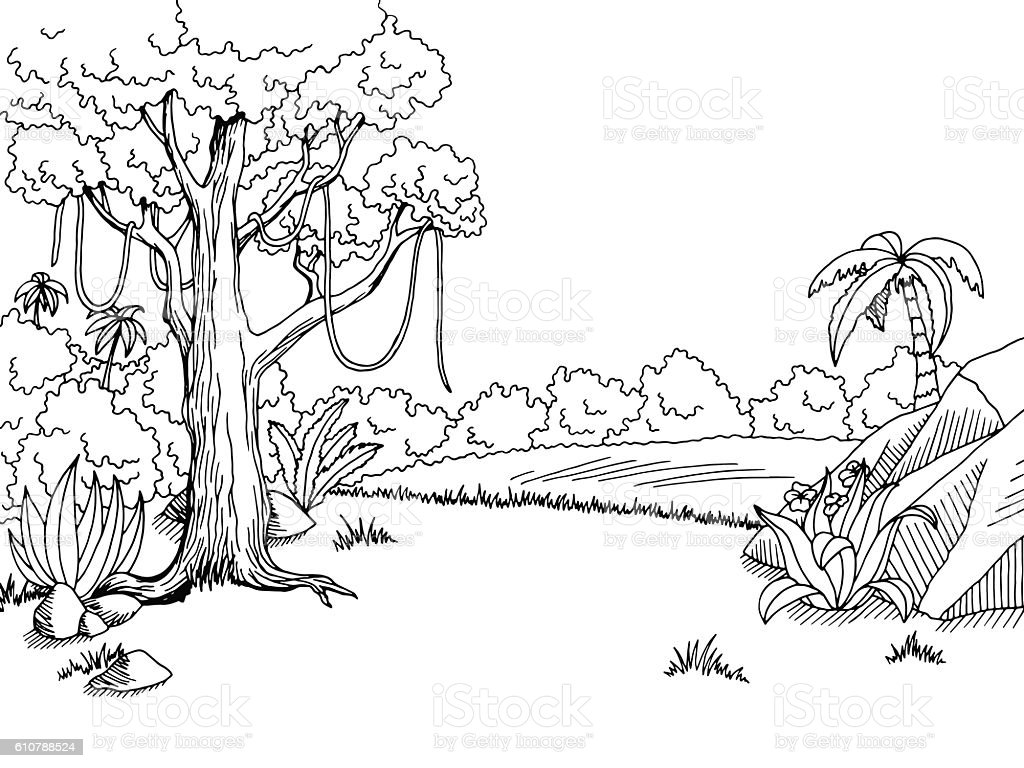 Line Art Jungle Animals : Jungle forest graphic black white landscape sketch